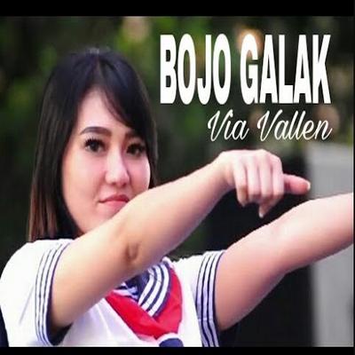 Full Album Lagu Via Vallen Album Bojo Galak Mp3 Rar/Zip