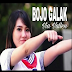 Full Album Lagu Via Vallen Album Bojo Galak Mp3 Rar/Zip