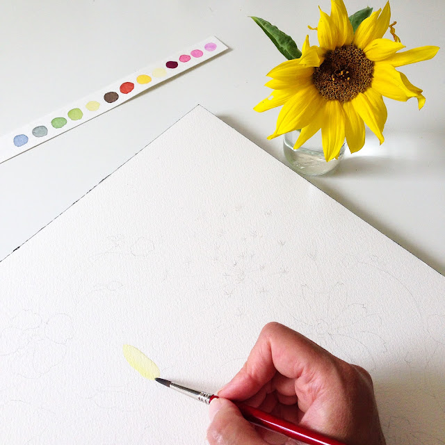 watercolor, watercolor painting, sunflower, painting sunflower, watercolor sunflower, studio, painting process, Anne Butera, My Giant Strawberry