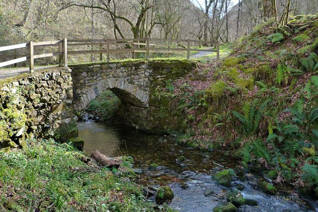 Puente sobre El Río Pequeño - Villamayor - Asturias
