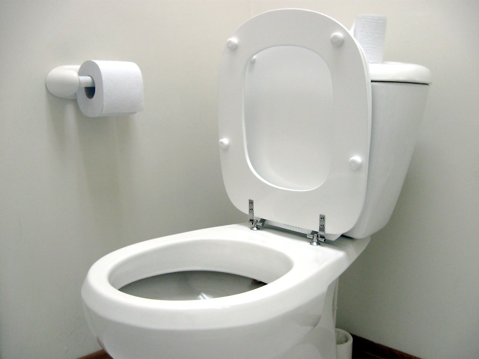 Suzanne Looms on Creativity, Innovation & Change: Leaving toilet