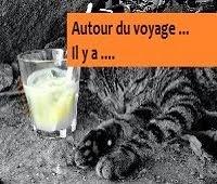 http://leschamotte.blogspot.fr/2012/08/autour-du-voyage-il-y.html