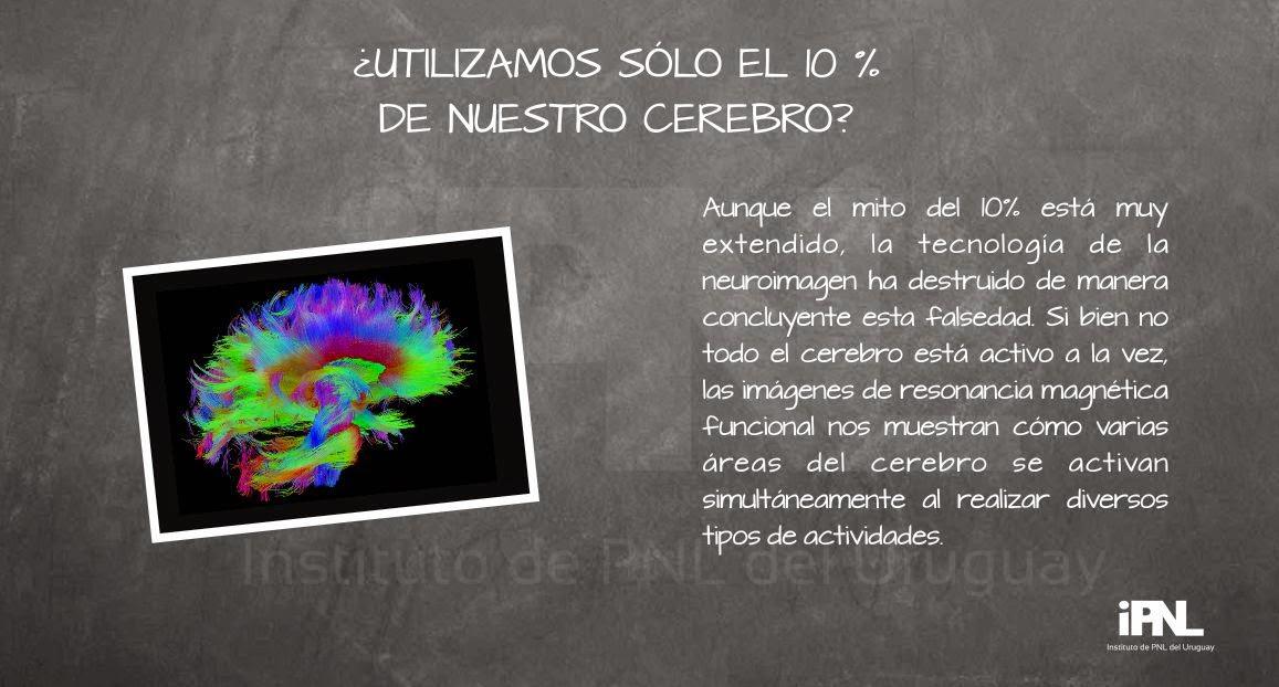 Pizarrón, imagen del cerebro