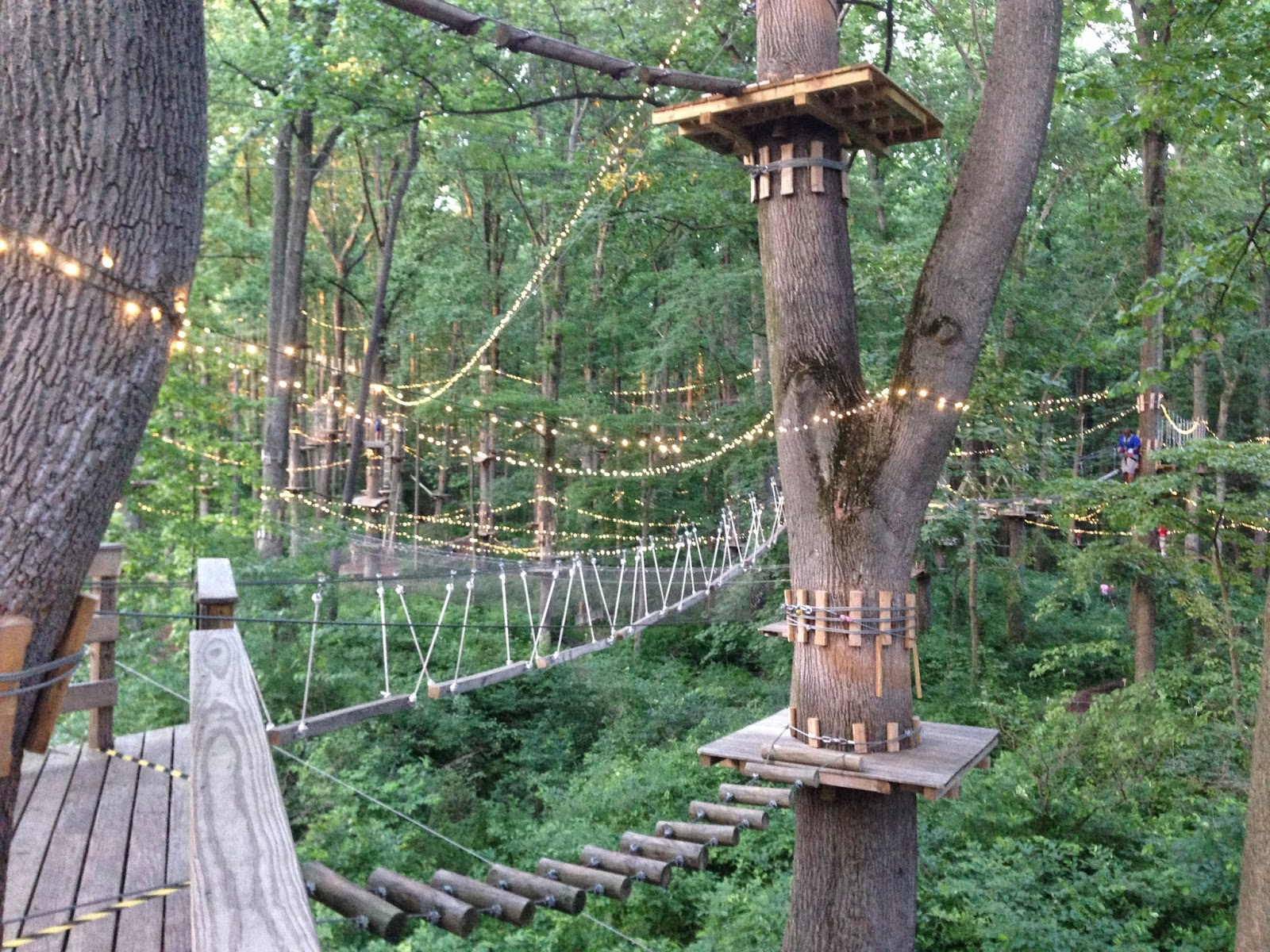 Family Fun In Md And Beyond The Adventure Park At Sandy