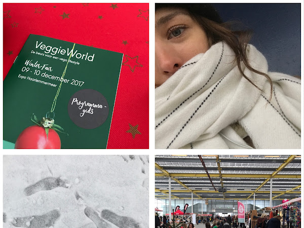 Sneeuw en VeggieWorld Winter Fair | Plog
