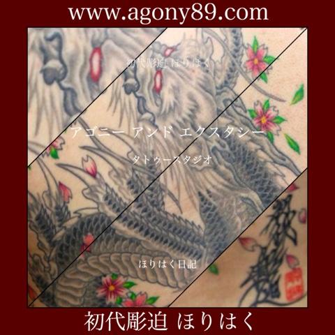 """<img src=""""horihaku.blogspot.com"""" alt=""""刺青デザイン和彫り龍""""/>"""