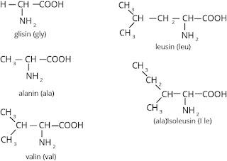 asam amino mengandung rantai samping alifatik