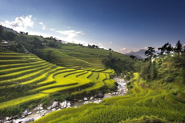 Ha Giang - A perfect alternative to Sapa Trekking 2