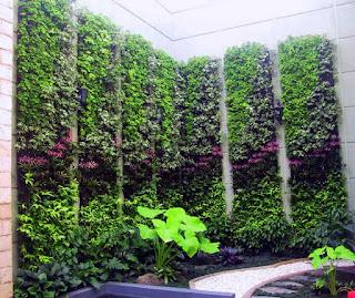 vertical garden dengan taman kering
