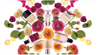 Perfume For Everyone