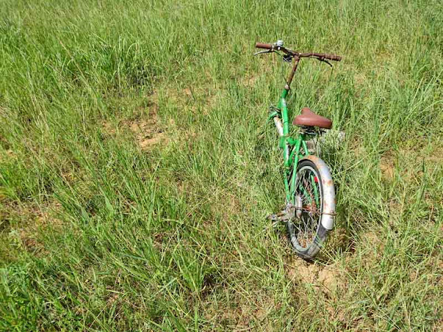 A bicycle abandoned in a field of grass