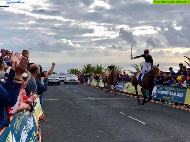 La Palma Ecuestre bate récords con la celebración de 20 carreras de caballos en dos jornadas