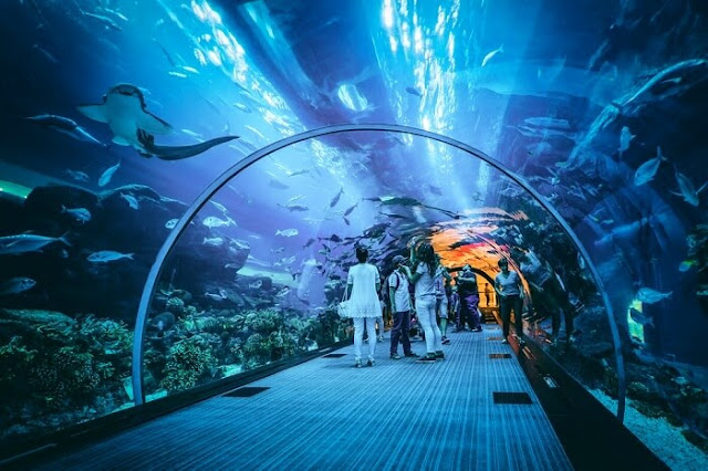 dubai package with atlantis