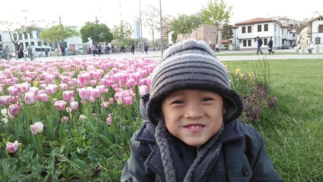 Menikmati Musim Tulip Di Turki