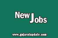 General Hospital, Palanpur Recruitment for Staff Nurse Posts 2018