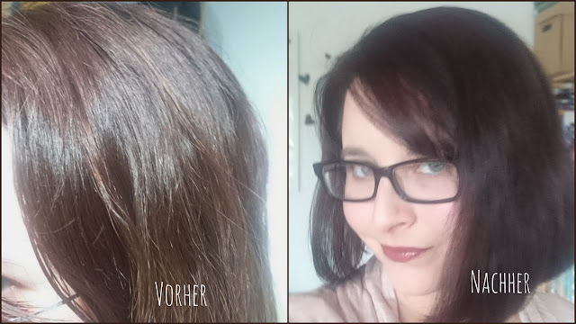 [Beauty] Schwarzkopf Color Expert Intensiv-Pflege Color-Creme mit OmegaPlex 4.0 Dunkelbraun