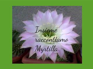 myrtilla-raccontiamo insieme-condivisione