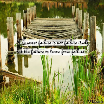 The worst failure is not failure itself but the failure to learn from failure.