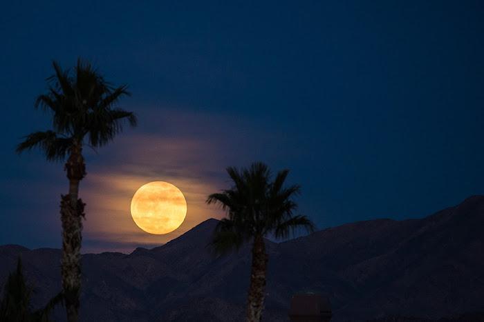 Mặt Trăng vàng nóng phía sau những đám mây mỏng đang mọc cao dần trên những rặng núi ở Las Vegas, Nevada. Hình ảnh: Tyler Leavitt.