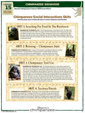 Disneynature S Chimpanzee Activity Book And Fun