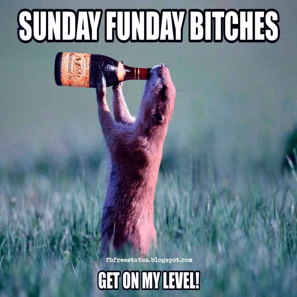 Good Morning, Sunday Funday Bitches Get On My Level.
