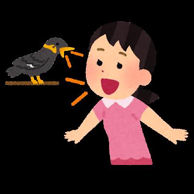 九官鳥に話しかける女の子のイラスト