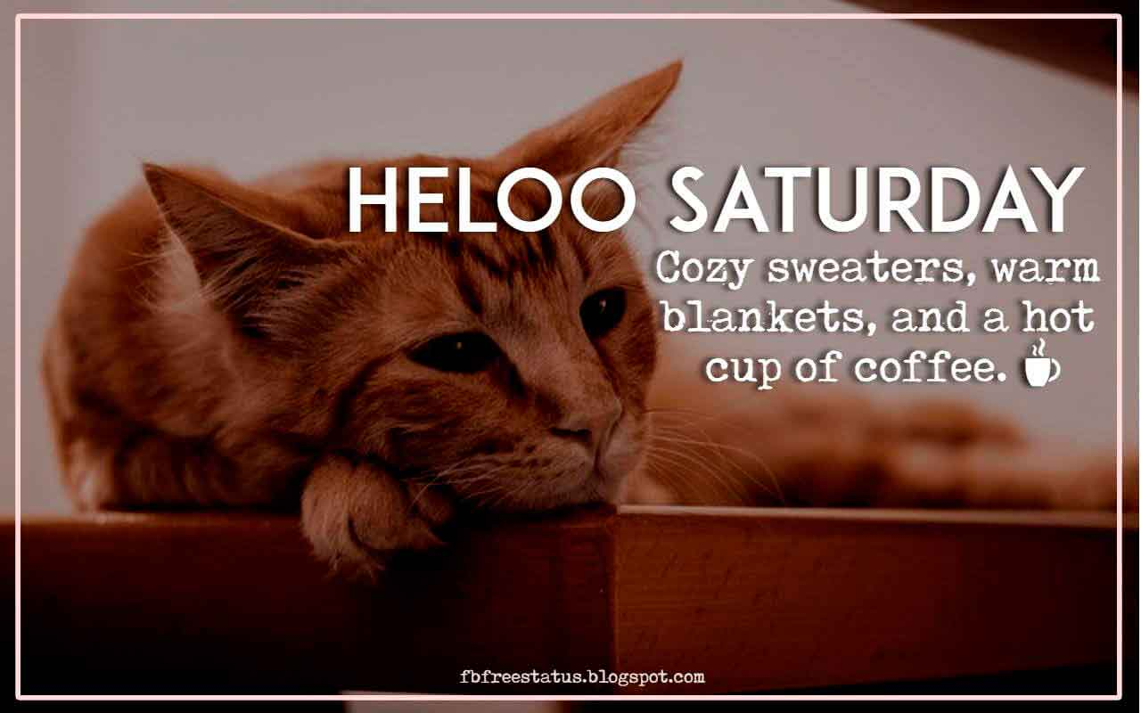 Hello Saturday, cozy sweaters, warm blankets, and a hot cup of coffee.
