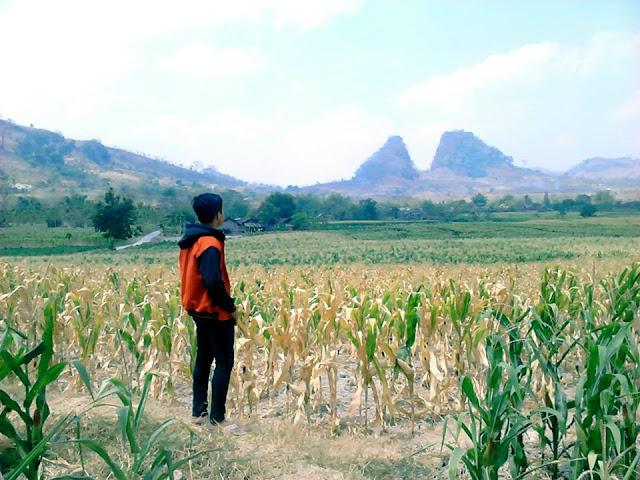 Gunung Kembar Pragelan - Gondang, Bojonegoro_Photo by Setyo Oleng