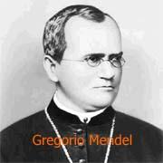 Frases Y Biografias Gregorio Mendel