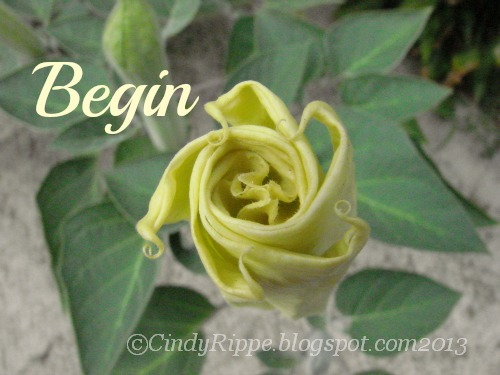 #inspirational quotes, #Angel Trumpet Flower, #Beginning a Business journey, #A week of words, #Florals-Family-Faith, #CindyRippe