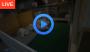 http://www.ustream.tv/channel/daily-of-eg-home-2?utm_campaign=www.eg-home.net&utm_source=ustre.am%2F1kHhn&utm_medium=social&utm_content=20170107001323