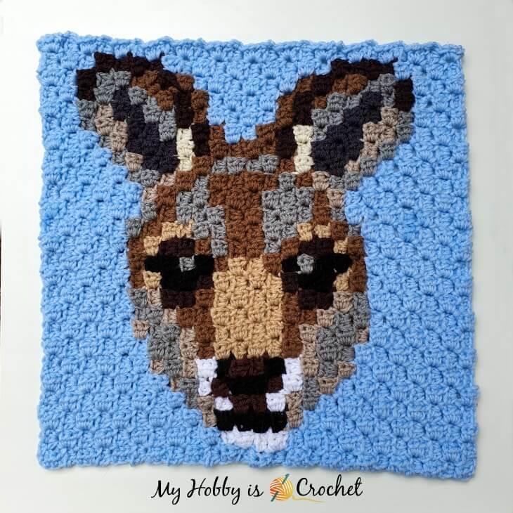 Kangaroo  C2C Square Pattern