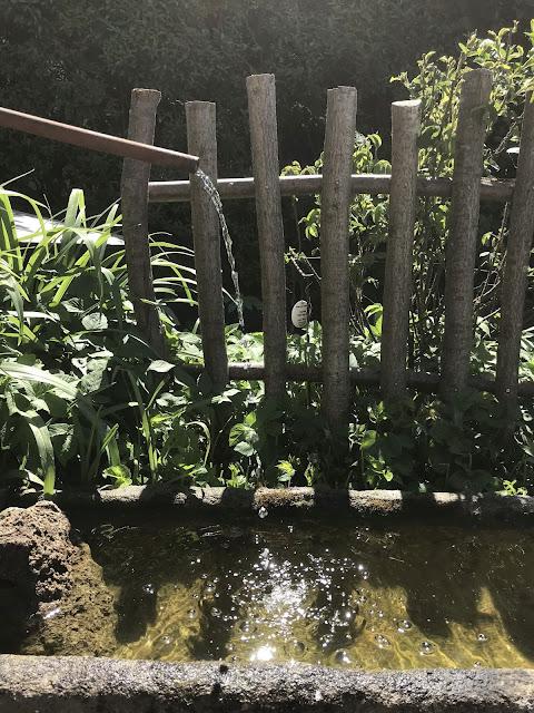 Wasser plätschert