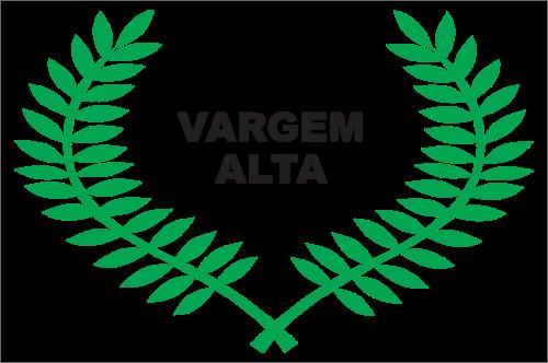 Bandeira de Vargem Alta