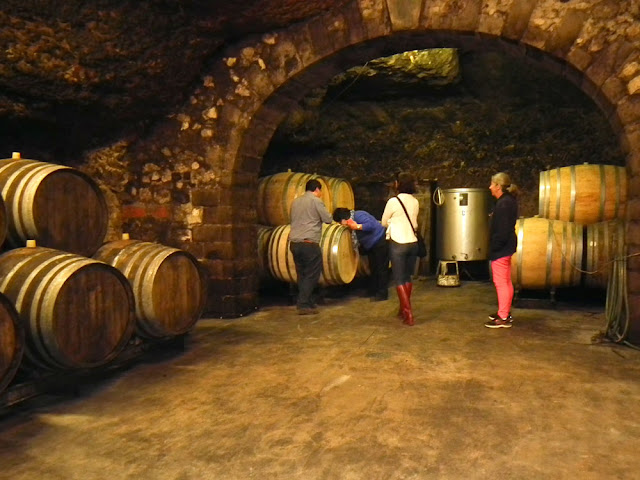 Visit award winning wine makers with a private guide for Loire Valley Time Travel. Tour the Loire in a classic car.