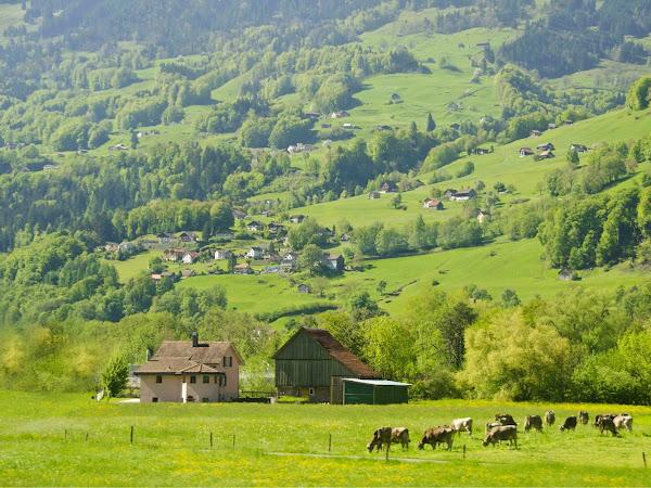 Tiga Hari Melintasi Swiss dan Liechtenstein