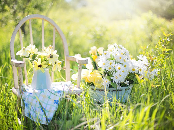 How To Host A Garden Party (Student Style) | Lifestyle
