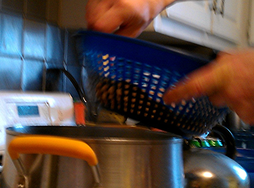 Using A Food Mill To Make Spaetzle