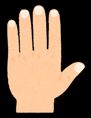 手の爪のイラスト