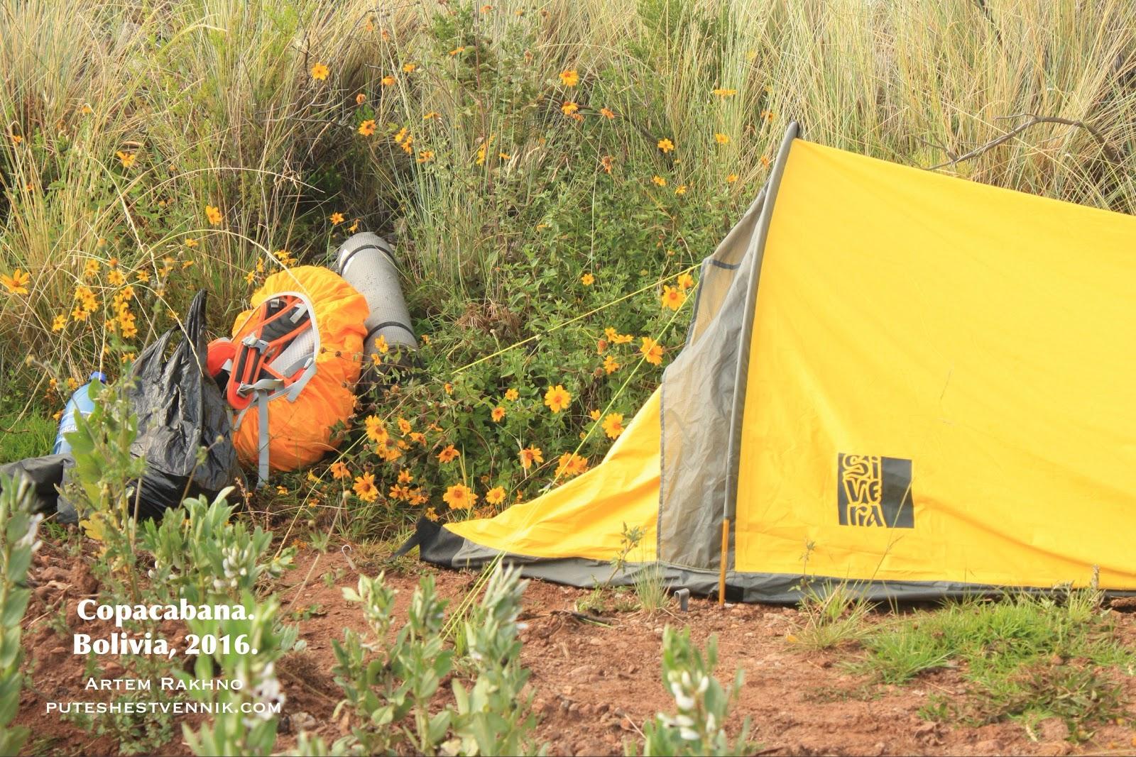 Палатка и цветы