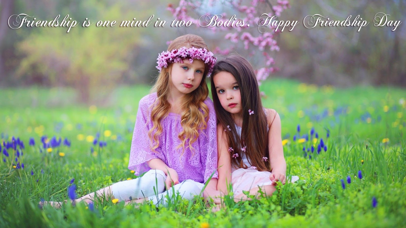 Beautiful-Friendship-Day-HD-Images-Wallpapers-Free-Download