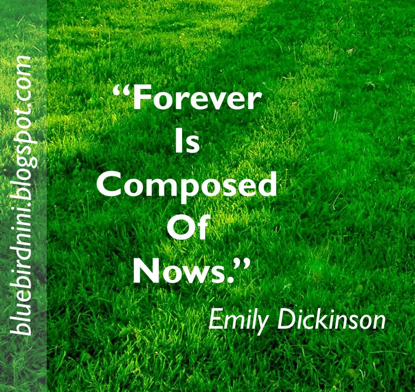Inspirational Quotes About Failure: BlueBird Nini: Emily Dickinson Quotes