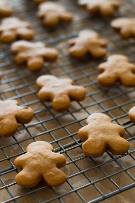Dog Biscuits for Christmas