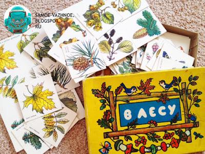 Игра СССР. В лесу игра СССР 1986 год. Игра В лесу СССР Жёлтая коробка птицы, птички, грибы на нитке, рябина, обложка, крышка.