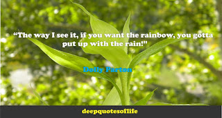 """""""The way I see it, if you want the rainbow, you gotta put up with the rain!""""  ― Dolly Parton"""