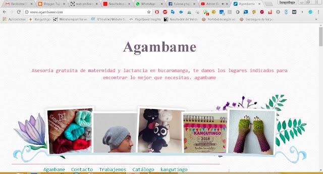Agambame, asesoría en maternidad