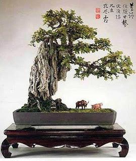 Ancient Penjing