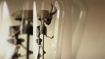 esqueletos-estranhos-encontrado