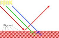 Pigmentlerin nasıl renkli göründüğünü ve ışığı nasıl yansıttığını gösteren çizim