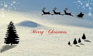 merry christmas greetings(www.sarkai-job.online)